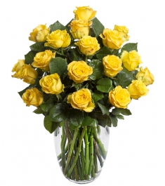 18 Yellow Roses Send to Philippines