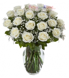 24 White Roses Send to Philippines