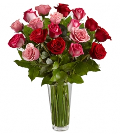 24 Hot Red & Pink Roses Send to Philippines