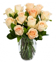 Peach Color Roses in a vase