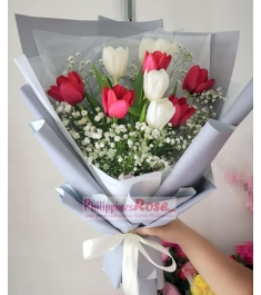 9 Pcs Red & White Tulips in a Bouquet