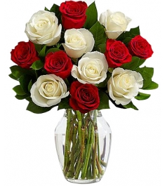 12 X-mas Mixed Roses