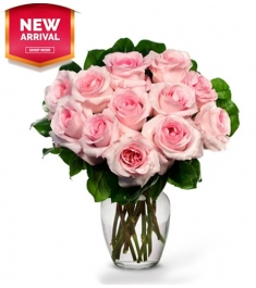 12 Pink Roses Send to Philippines,Roses to Philippines