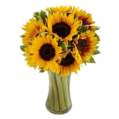 Buy Ten Sunflowers In Vase Online To Philippines