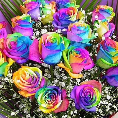 One Dozen Rainbow Roses Bouquet