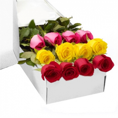 One Dozen Mix Roses in a Box Delivery to Philippines