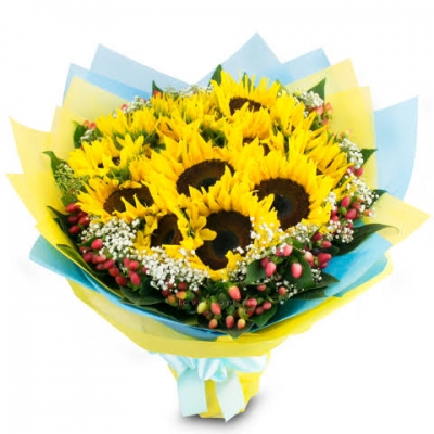 12 sunflowers in vase