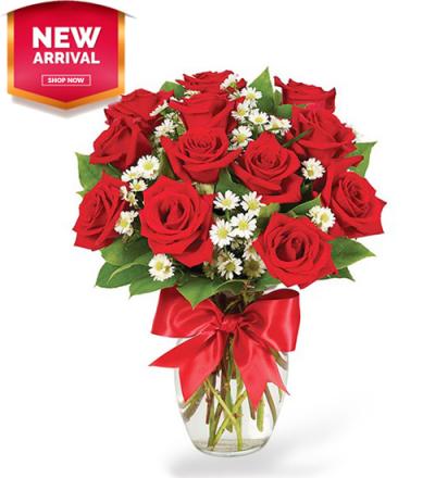 Luxury One Dozen Red Roses Send to Philippines