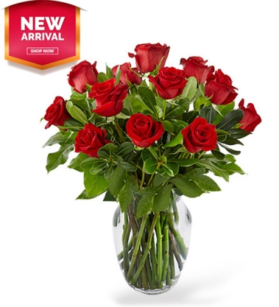 Premium Dozen Red Roses Send to Philippines,Roses to Philippines