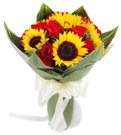 12 roses and 6 sunflowers to philippines