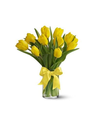 Yellow Tulip with Vase
